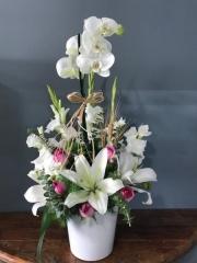 Aranjmanlı Beyaz Orkide