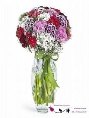 Vazo'da Hüznü Yusuf Çiçekleri